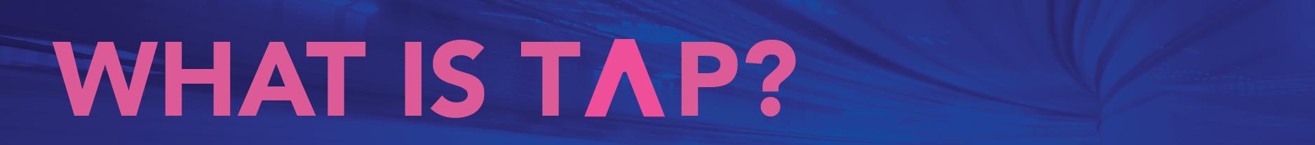 Trade Accelerator Program (TAP)