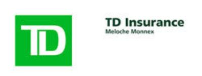 Td Logoweb250